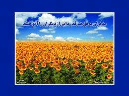 تابلوی : مدیران موفق هنر قدردانی از دیگران را آموختند  - سایت پاکزادیان دات کام  www.pakzadian.com